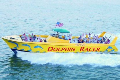 Picture of Dolphin Racer Speedboat Adventure