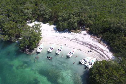 Key West Snorkel Safari Tour
