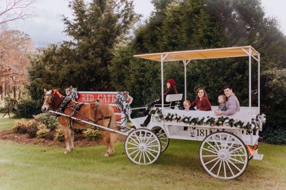 Carriage Tours at Red Gate