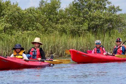 Kayak Marineland Eco-Adventure